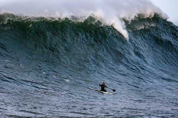Big Wave Dave - 236 Photos & 377 Reviews - Surfing - 226 ...